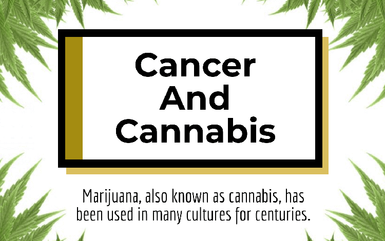 Cancer And Cannabis